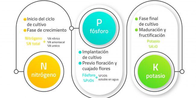abono NPK nitrógeno fósforo y potasio
