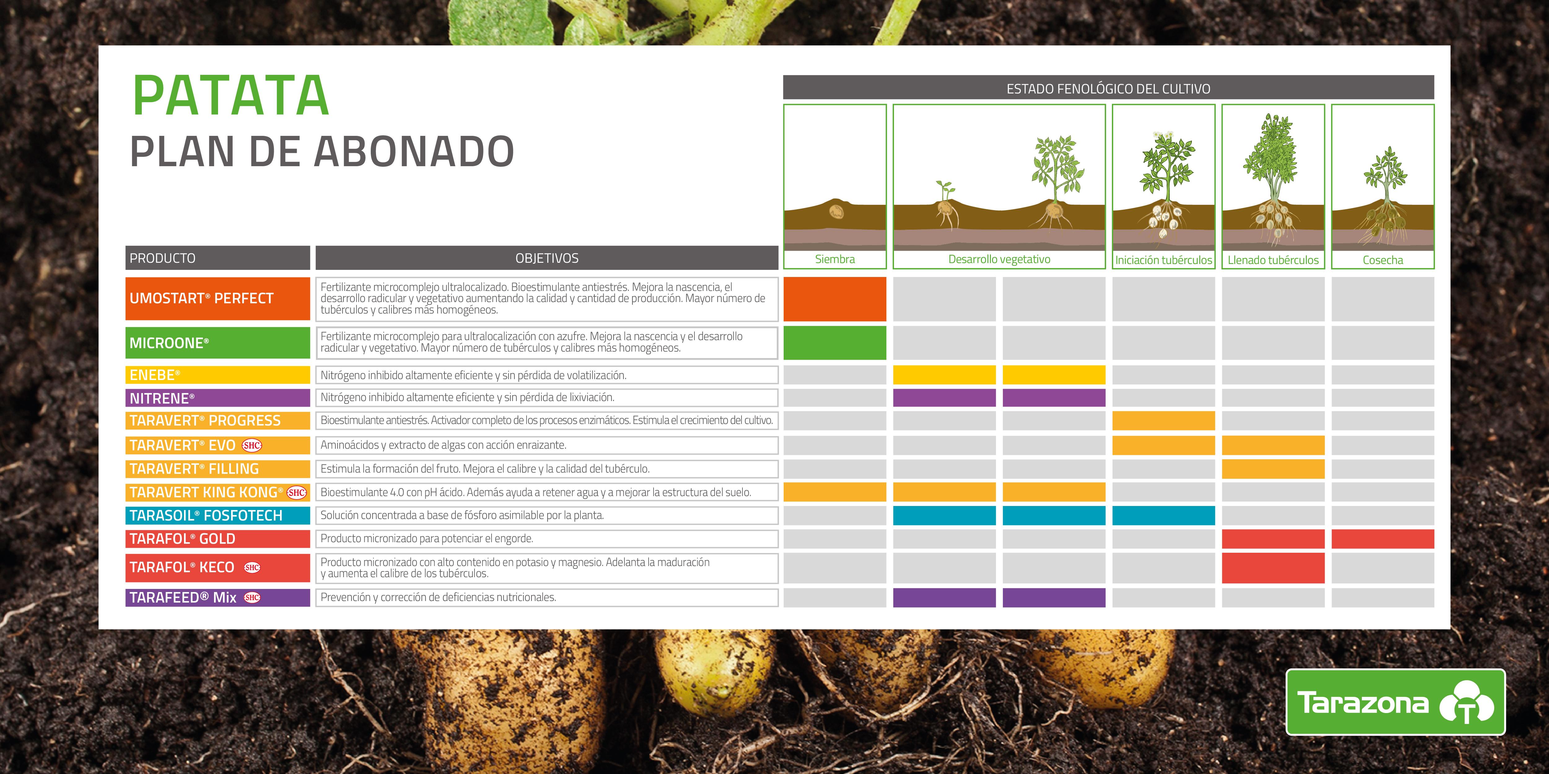 plan cultivo patata