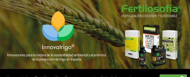 innovatrigo fertilización del cereal