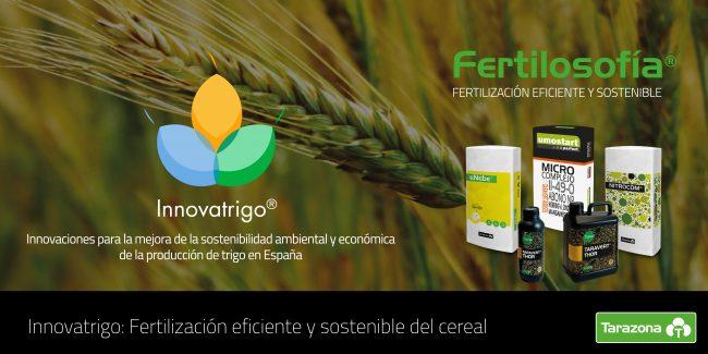 innovatrigo fertilización del cereal