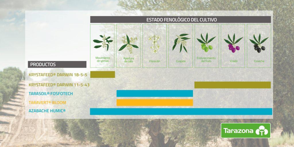 fertirrigación para el cultivo del olivar abono