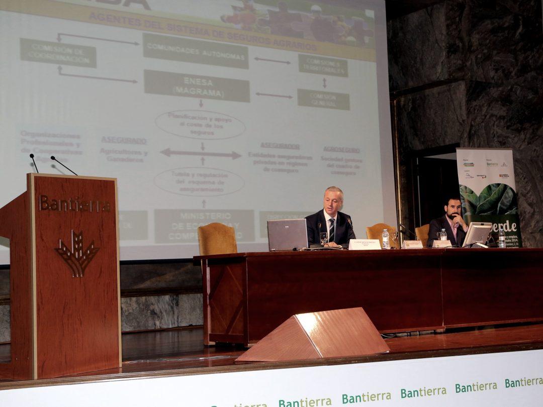 Ponencia. Director ENESA tcm7 345837 noticia