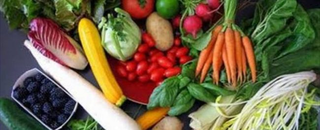 agricultura ecológica 3