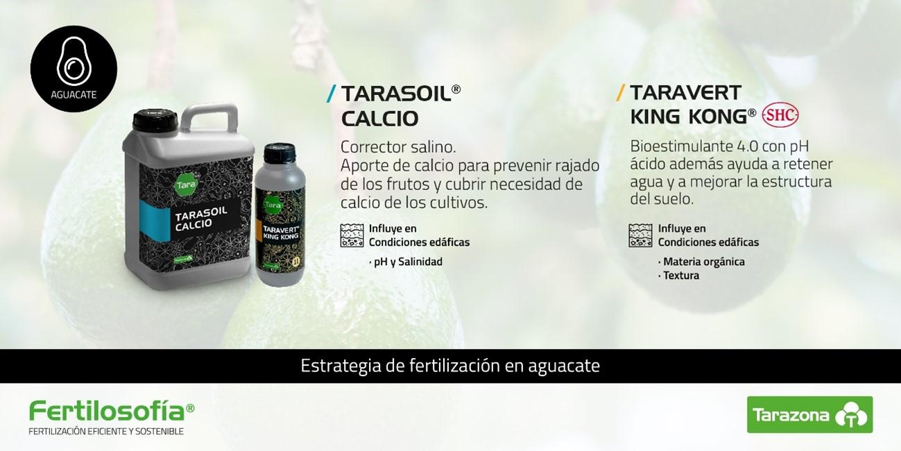 fertilizante para aguacate