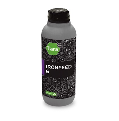 ironfeed6
