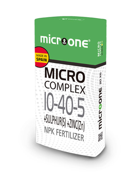 microone-microcomplex